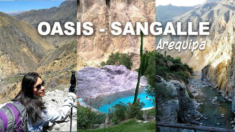 oasis sangalle colca arequipa